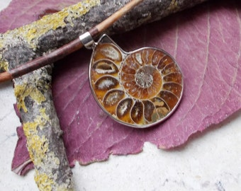 Plated Ammonite fossil, pendant, charm, silver