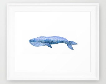 "Blue Whale Watercolor Painting Art Print (8.5x11"")"