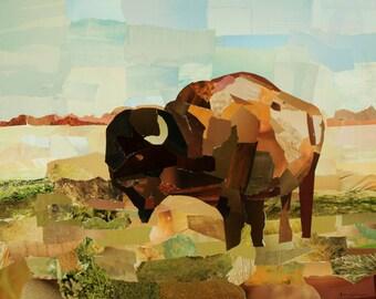 Bison Magazine Collage