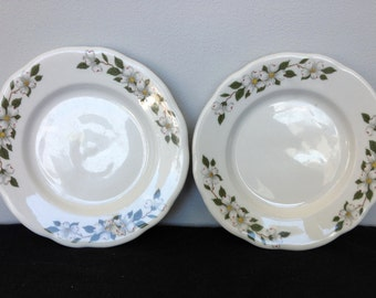 Set of Two Buffalo China Restaurant ware Dogwood Bread and Butter Plates