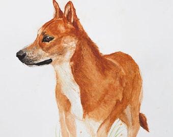 Great Dingo, 297 x 420 mm (A3)