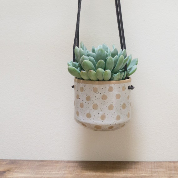 Ready To Ship Hanging Wall Planter For Succulents Indoor