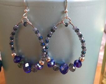 Vibrant Indigo crystal earrings