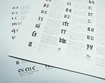 Poster combo pack: Textura and Foundational Ductus