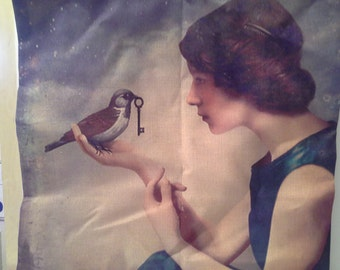 Girl with bird and key, pillow case