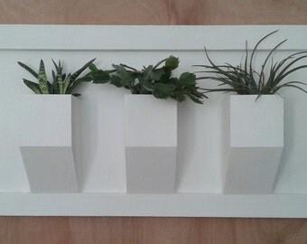 Wall planters Q15