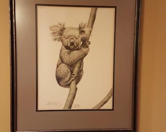 Guy Coheleach   Koala   plate XXV   Signed and framed Print