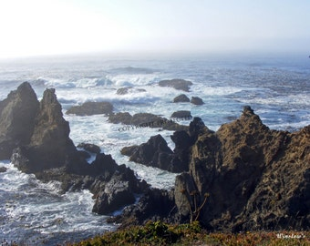 Mendocino county etsy for Fort bragg fishing charters