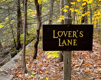 Lover's Lane in the Woods Nature Photography