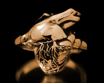 Anatomical Heart Ring Brass Anatomy Medical Jewelry
