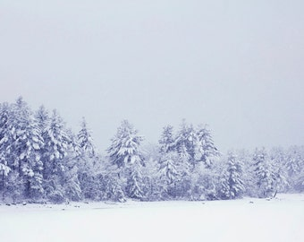 Winter Snowy Landscape Photography Print