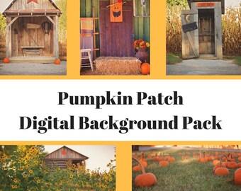Fall Pumpkin Digital Backdrop Pack