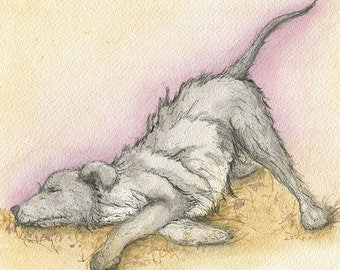 Giclee Print of an Original Watercolour Painting. Scruffy Grey Dog.