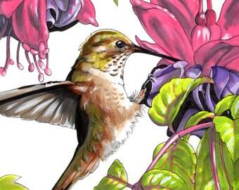 Hummingbird in Pink Flowers