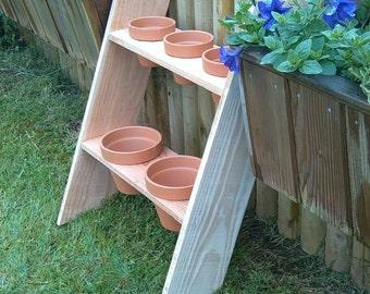 Herb/plant ladder