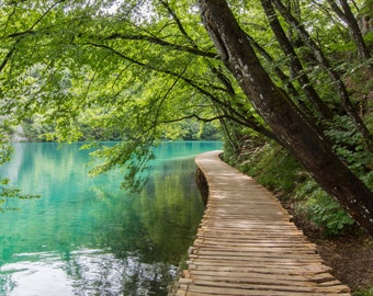 Croatia, Plitvice Lakes, Nature, Waterfalls, Pathway, Travel, Print, Fine Art, Wall Art, Photograph, Trees, National Park, Landscape