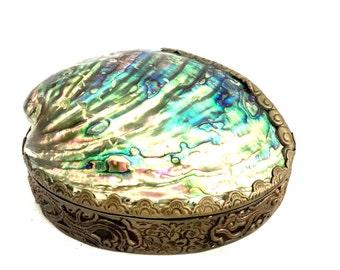 Unique Shell Dish