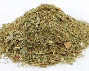 Sassafras, Cut (sassafras Albidium)