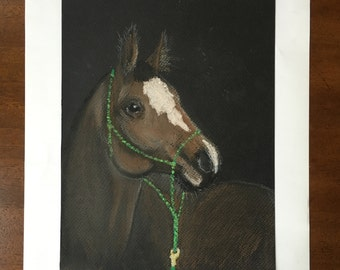 A Horse with Green Bridle