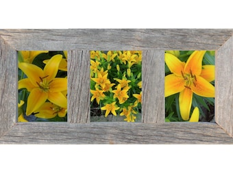 3 Opening 4x6 Rustic Barnwood Collage Picture Frame