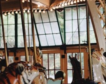 11x17 Carousel Print