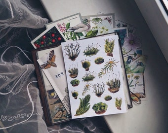 Moss stickers - moss watercolor sticker flakes