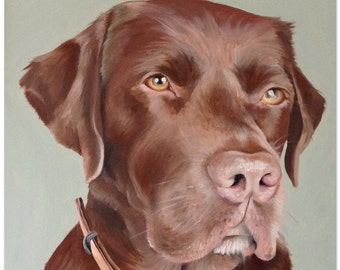 Pet Portraits - oil on canvas board