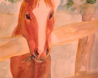 "Original Horse  Watercolor Painting ""Norman"""