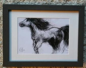 Framed pony