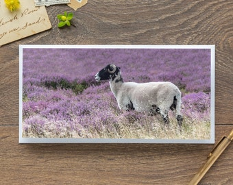 Trough of Bowland - Single Blank Card / Birthday / Thank You / Notelet / Sheep