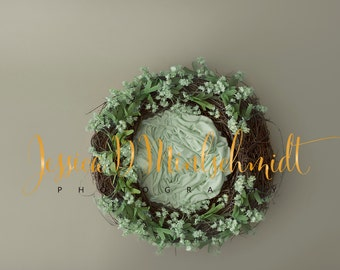 NEWBORN DIGITAL BACKDROP: Mint Floral Nest