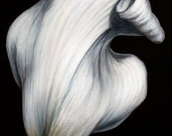 Lily White #2