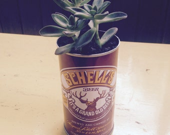 Vintage Schell's Can with Succulent