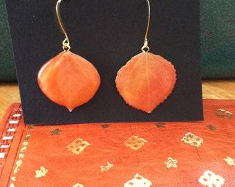 Aspen Leaf Earrings: Tarryall