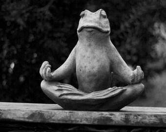 Garden Zen: WALL ART Fine Art Photography Farm & Garden Frog Statue Meditation Water Pond Plants Botanical