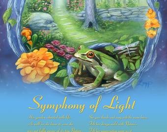Symphony of Light 11 x 14 inch archival print