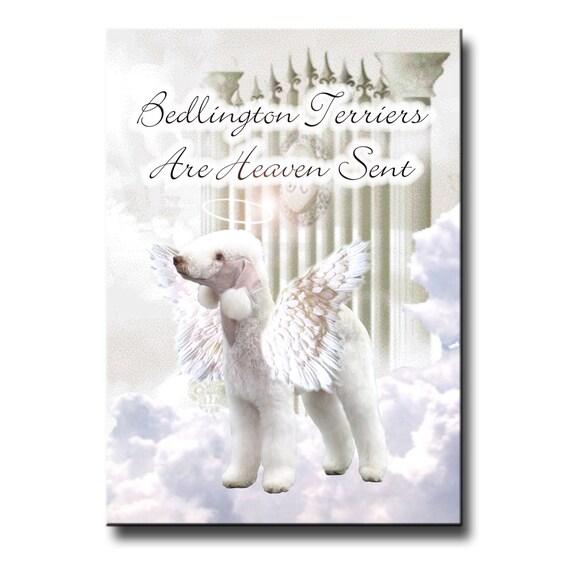 Bedlington Terrier Heaven Sent Fridge Magnet