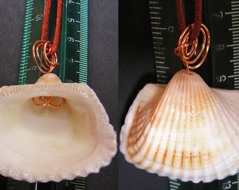 REDUCED=Simple shell on copper wire