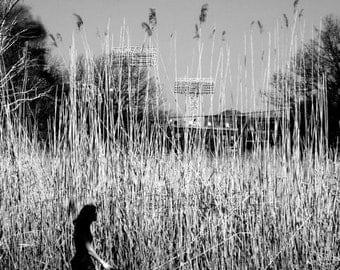 woman w/ dog, sky-high grass