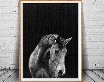 Black And White Digital Photo Art, Horse Print, Horse Wall Art, Horse Photo, Horse Photography, Modern Minimal Decor, Wilderness Art Photo