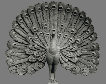 Sculpture, PEACOCK, Art Nouveau, consist of plaster of Paris