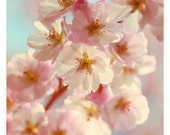 Flower Photograph - Botanical Art Print - Pink Art - Pep Talk - Spring Art - Cherry Blossom Print -Fine Art Photography - Oversized Art
