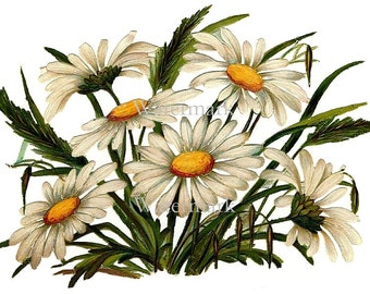 """Daisy Flower 5"""" x 7"""" Fabric Applique, Cotton Fabric Quilt Block, Crazy Quilt Panel Quilting, Sewing, Craft Projects"""