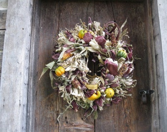 INDIAN CORN HUSK Wreath with Purple Husks  Cobs &  Gourds Standard Size