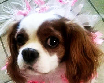 Fancy dog collar pink roses and shimmer ribbons wedding accessory bridal dog collar