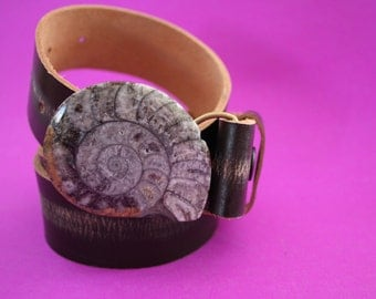 Ammonite FOSSIL belt BUCKLE with FREE black leather snap belt