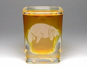 Manatee etched square shot glass - cute sea cow