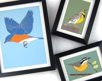 Wild Bird Prints--choose from 32 birds--choose your size!