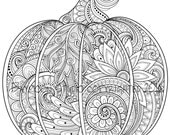 Paisley Pumpkin Coloring Page, Printable Coloring Pages, Adult Coloring Pages, Hand Drawn, Digital Illustration, INSTANT DOWNLOAD PRINT