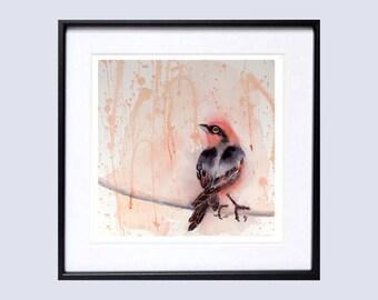 Nature | Bird Art Prints | Purple Finch |  Bird Watercolor | Purple Painting | Song Bird | Laberge | 7505